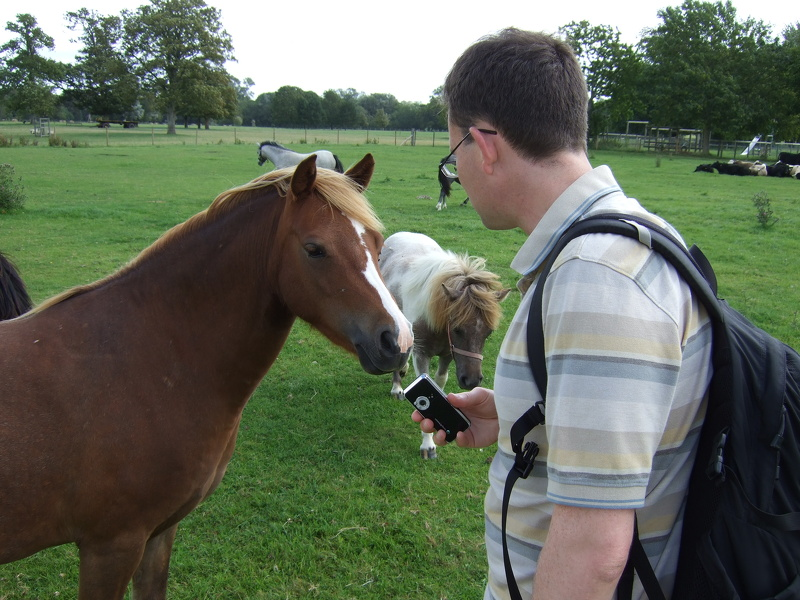 Jim impresses the horse with his camera