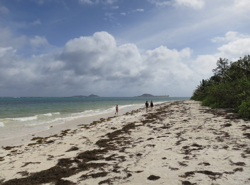 One of Praslin's beautiful beaches