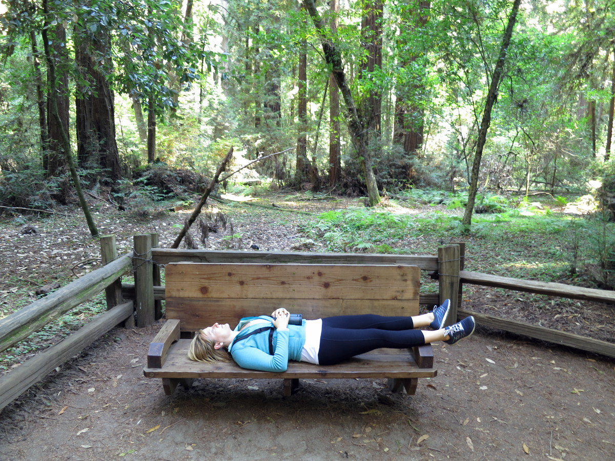 Claire relaxes with the redwoods near Santa Cruz